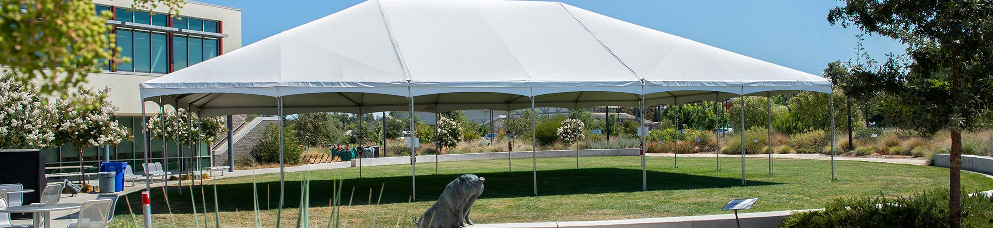 Image of tent on School of Veterinary Medicine campus at UC Davis.
